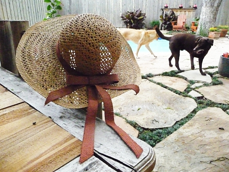 mom's beach hat by mymom's beach hat by my pool. no kidding. in the background, left-to-right, are harley and boomer, the wunderlabs! pool. no kidding.