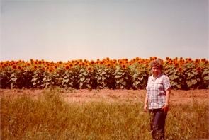 Sunflower Betty