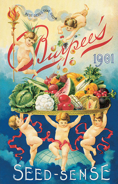 The Front Cover Of The Burpee's 1901 Seed Catalog