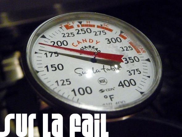 Sur La Table Candy Thermometer