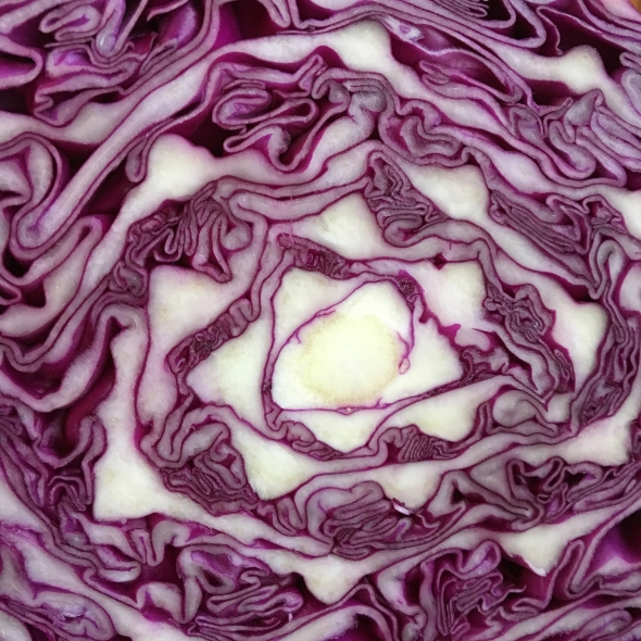 Sweet and Sour Cabbage Close Up