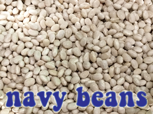 Why Are They Called Navy Beans?
